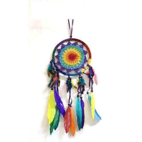Acchiappasogni Piume Multicolore 16cm